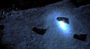 Bigfoot's foot prints