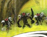 Makuta Species