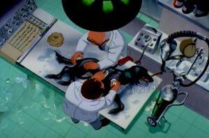 PD Scientists