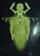 Galactus (Marvel Fanfilm Universe)