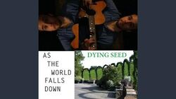 As the World Falls Down-1586306412