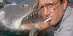 Jaws 0-877x432