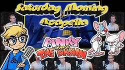 Pinky and the Brain Theme - Saturday Morning Acapella