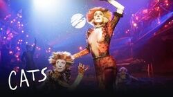 Macavity the Mystery Cat Part 2 Cats the Musical