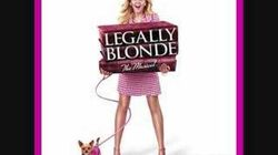 Legally Blonde Blood in the Water