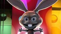 Boingo the bunny top of the woods