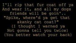 Big Bad Cat lyrics - Rugrats Go Wild
