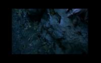 Screen Shot 2020-02-21 at 02.41.36