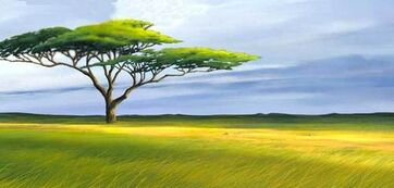 The-Lion-King-Africa