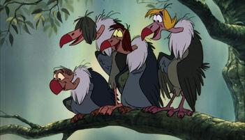 Vultures JB