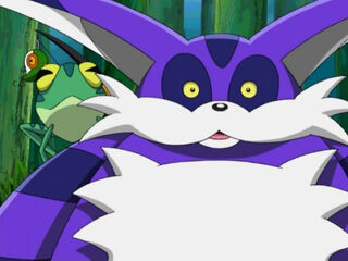 Big-the-Cat