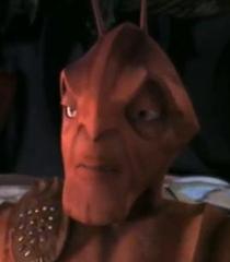 General Mandible