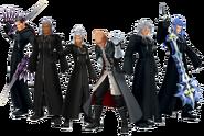 True Organization XIII