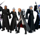 The True Organization XIII