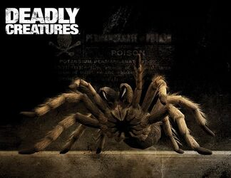 Deadly Creatures (The Spider)