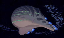 Federation Ship