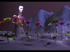 Mysterious' Stranger's Flowers