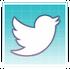 Button- twitter