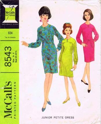 McCalls 1966 8543