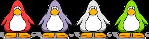 Color Vote penguins