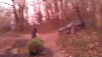 William Throws The Christmas Tree In The Woods
