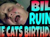 BILL RUINS THE CATS BIRTHDAY!!!