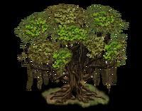 Tree-state-00