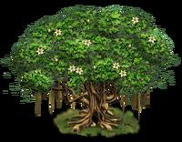 Tree-state-04