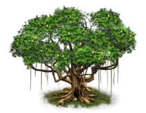 Tree-state-03