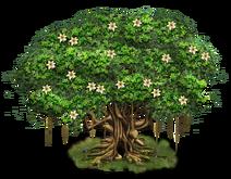 Tree-state-05