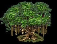 Tree-state-02