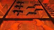 SW - Firearms