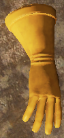 Glove Worldmodel
