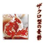 Zakurogata no Yuutsu (single)
