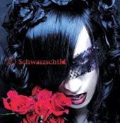 D Schwarzschild