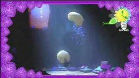 Goobaa Romance Video