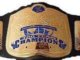 VWF Tag Team Championship