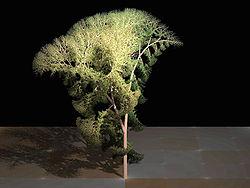 Fractal tree (Plate b - 3)