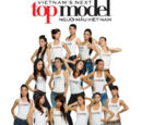 Vietnam's Next Top Model, Mùa Giải 1