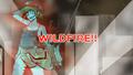 CIRCRUSH - WILDFIRE!!