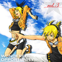 Wonderful Opportunity Album Vol 3