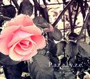P.a.r.a.l.y.z.e. (album)