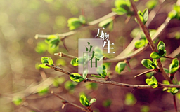 """Image of """"立春 (Lìchūn)"""""""