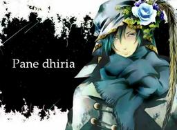 "Image of ""Pane dhiria"""