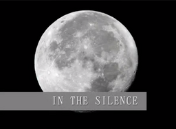 "Image of ""IN THE SILENCE"""