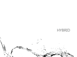 """Image of """"HYBRID"""""""