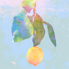 Lemon (Kenshi Yonezu) icon