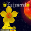 Ephemeral single