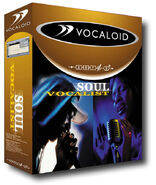 SoulVocalist