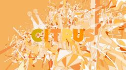 """Image of """"CITRUS"""""""